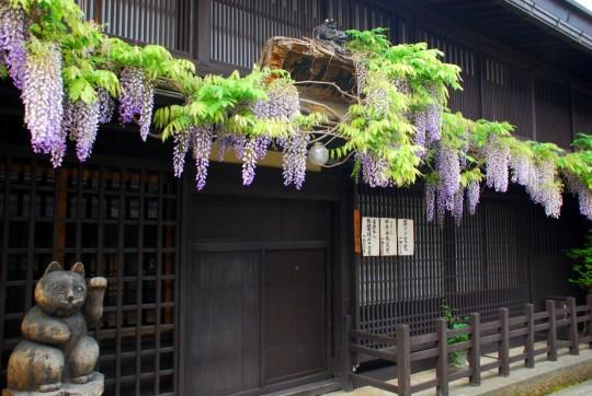 Takayama - Japan Itinerary