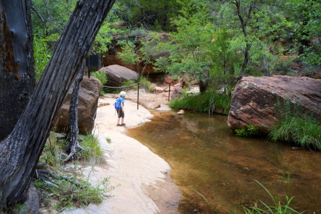 Middle Pools, Exploring Zion National Park
