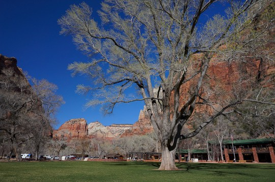Zion Lodge, Exploring Zion National Park with kids