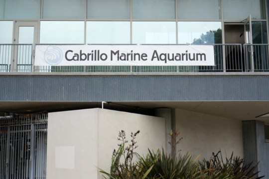Cabrillo Marine Aquarium in San Pedro, CA