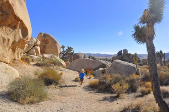 Hidden Valley - Joshua Tree National Park Hiking
