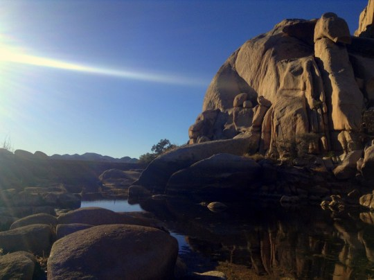 Barker Dam - Joshua Tree National Park Hiking