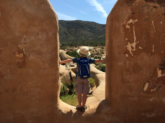 Year in Review: Joshua Tree