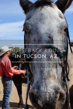Horseback riding in Tucson, Arizona