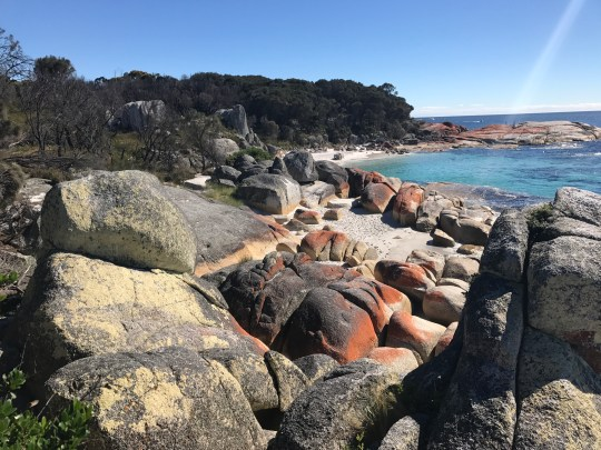Best Family Road Trips - Tasmania