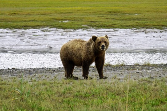 7 Things to Know Before You Go to Alaska