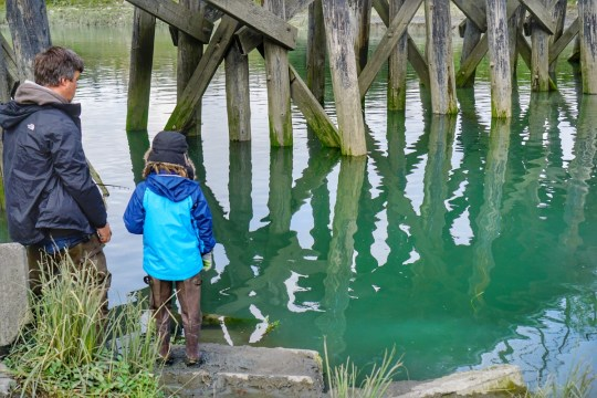 Alaska Road Trip - Fishing at Ship Creek