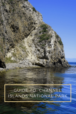 Guide to Channel Islands National Park