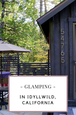 Glamping in Idyllwild California with kids. Guide for where to stay, eat and what to do!