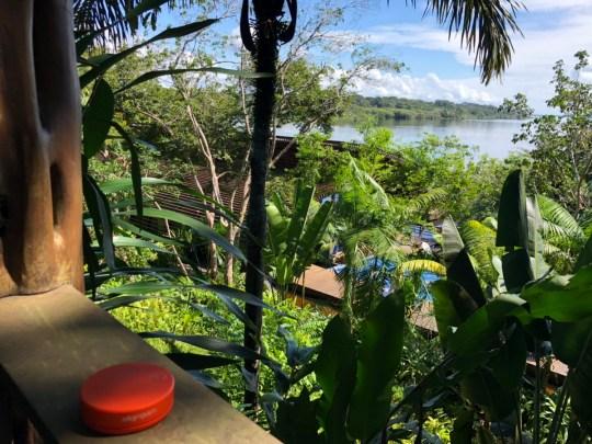 Portable Wifi Hotspot provides great value all over the world, including in the Brazilian jungle