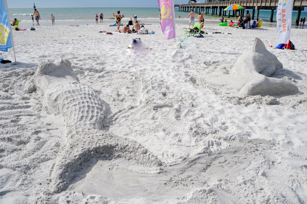 Things to do in Clearwater Florida - Attend Sugar Sand Festival