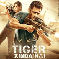 tigerzindahai_profile