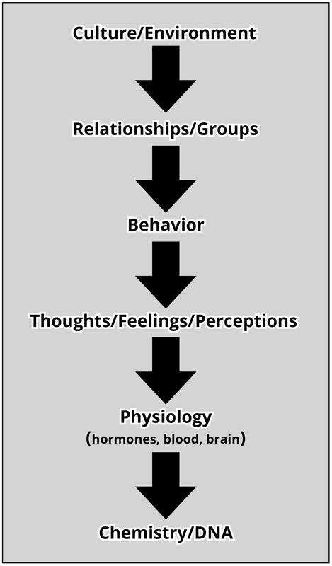 An Introduction To The Science Of Social Psychology Noba
