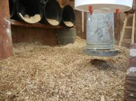 Deep litter method with straw and pine shavings.
