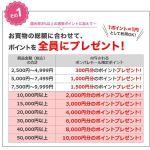 ポンパレモールで5万円以上の買い物すると1万円相当のポイントを還元セール中!iPad AirやDSC-RX100等の購入がお得!