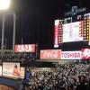 プロ野球のファンクラブに加入するとチケットは安く買えるのか調べてみた。<ヤクルトSwallows CREW 2014年編>