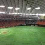 【東京ドーム観戦記】D指定席の特徴をまとめてみた。