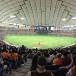【東京ドーム観戦記】バックネット裏は試合を真剣に見るにはとても良い席だ