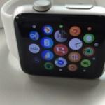 Jisoncase製のApple Watchの交換用の本革バンドを購入