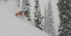 book ski tour