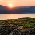 exceptional winery tours okanagan