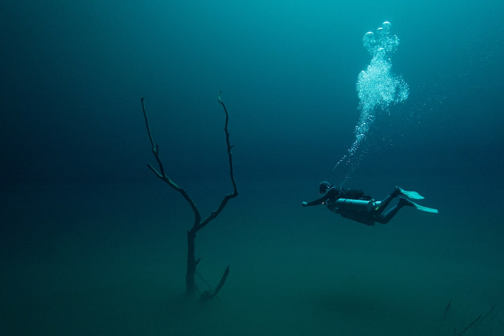 Klaus Thymann Diving