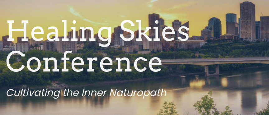 Healing Skies Conference Appearance – Dr. David Duizer ND