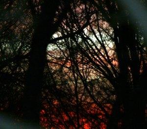 sunset-2008-12-31-08