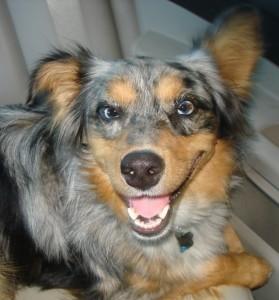 kasey-smiles
