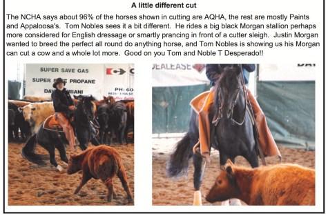 BC Cutting Horse