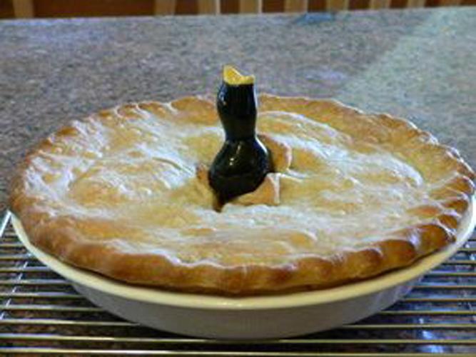 pie-bird