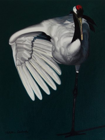 Nikita Coulombe-Crane low res