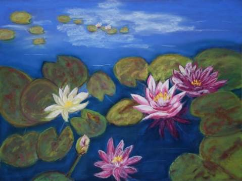 Water-Lilies_1_640