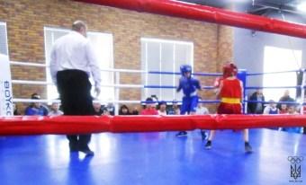 бокс (2)