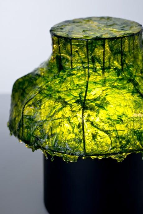 Marine Light Nir Meiri 2 e1369140575161 Israeli Designer Uses Seaweed To Create Cool Lamps