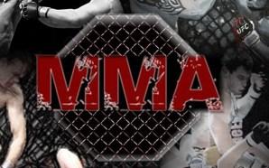 ESSE FIM DE SEMANA NO MMA: KSW, RFA e EFN…