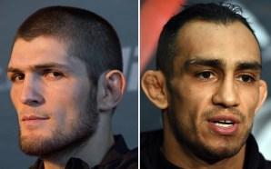 Khabib planeja retorno em outubro e mira luta pelo cinturão…