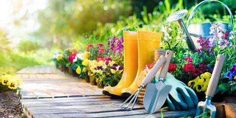 Kick start your Garden with these 5 Garden tips!