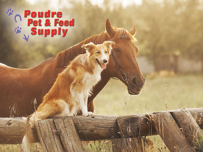 Poudre Pet & Feed Supply of Northern Colorado