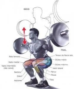 cuáriceps potente tecnica sentadilla