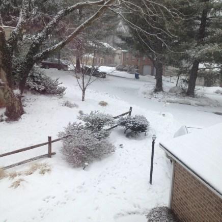 Go Away Snow!