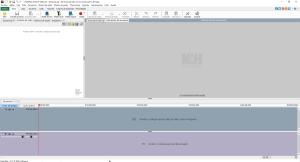 VideoPad editor video