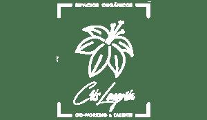 Diseño web Madrid y diseño gráfico para Cris longoria