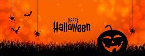 Happy halloween nocturna web