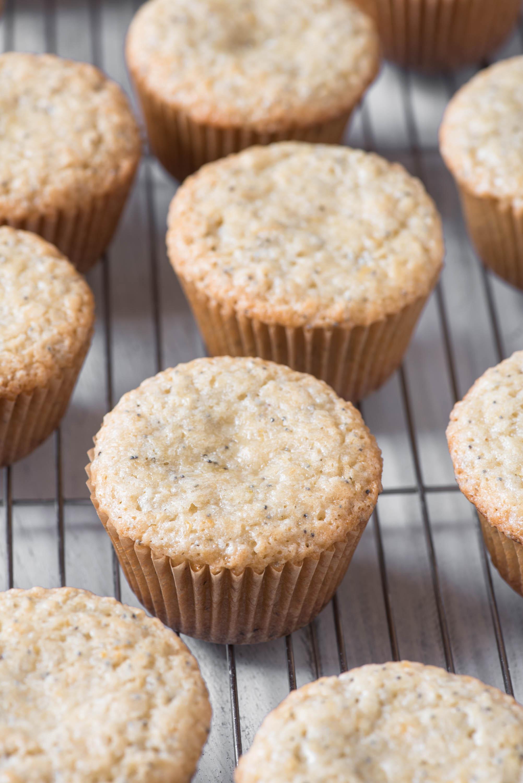 close up shot of lemon poppyseed cupcakes
