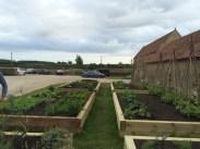 Roth kitchen garden beds
