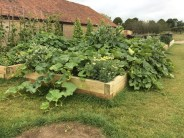 kitchen garden at Roths Bar and Grill, Somerset
