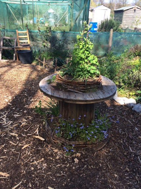 a small table herb garden made out of a recycled wooden spool