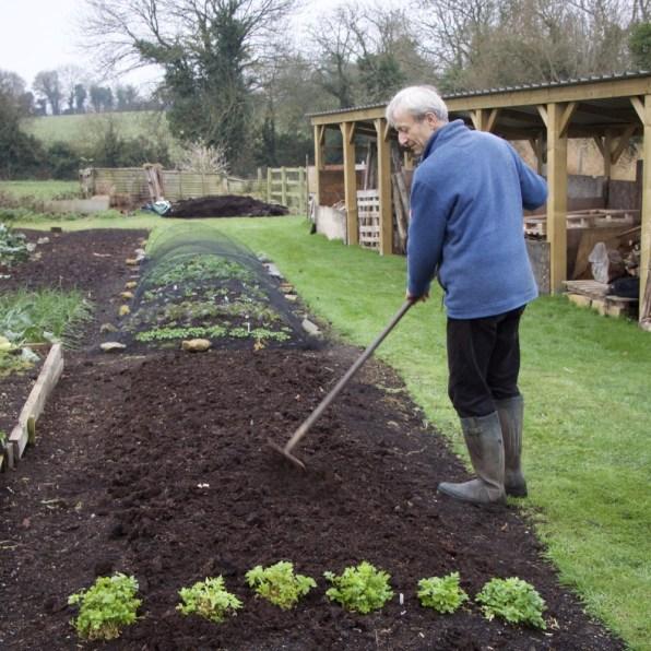 Charles raking the compost to break up any big lumps