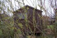 willow screening